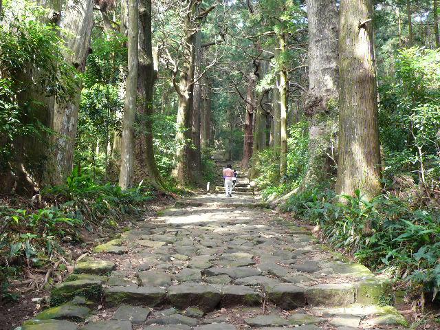 2008,7和歌山の 095.jpg