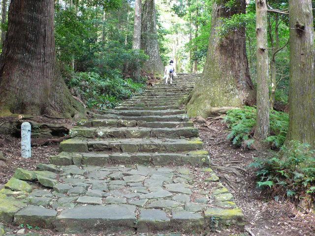 2008,7和歌山の 096.jpg
