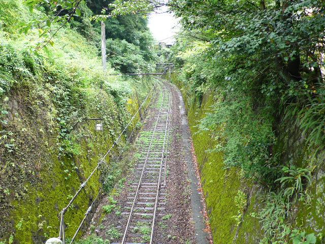 2008,7和歌山の 161.jpg