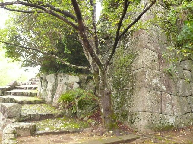2008,7和歌山の 163.jpg