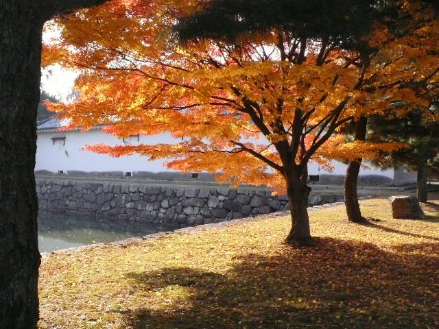 2008年12月京都 091.jpg