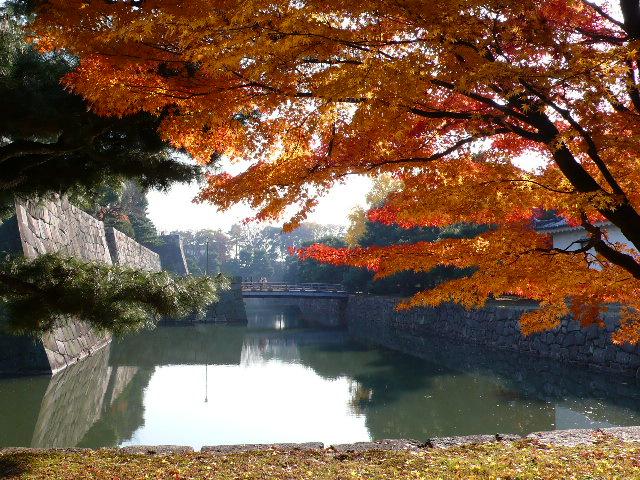 2008年12月京都 093.jpg
