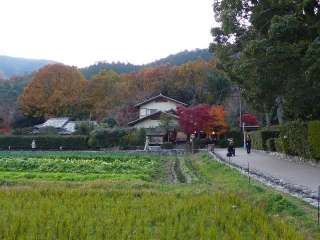 2008年12月京都 119.jpg