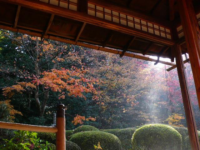 2008年12月京都 165.jpg