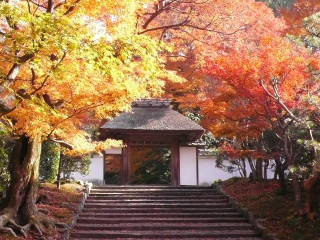 2008年12月京都 182.jpg