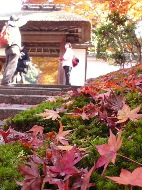 2008年12月京都 186.jpg