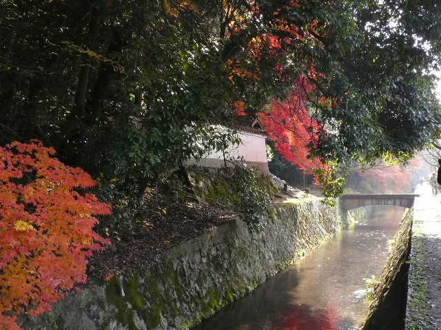 2008年12月京都 188.jpg