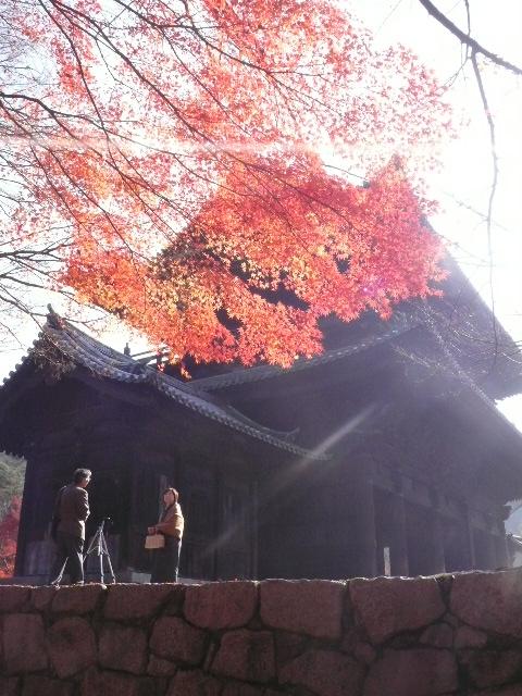2008年12月京都 189.jpg