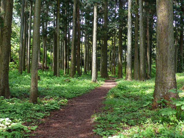 2009年5月6日~8日 和倉温泉の 148.jpg