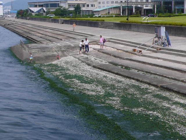 2009年6月 名鉄 101.jpg