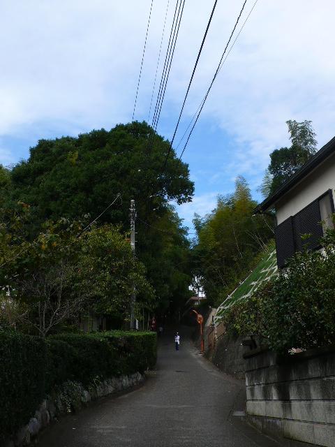 2008年10月佐倉 003.jpg