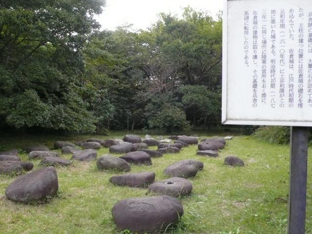 2008年10月佐倉 028.jpg