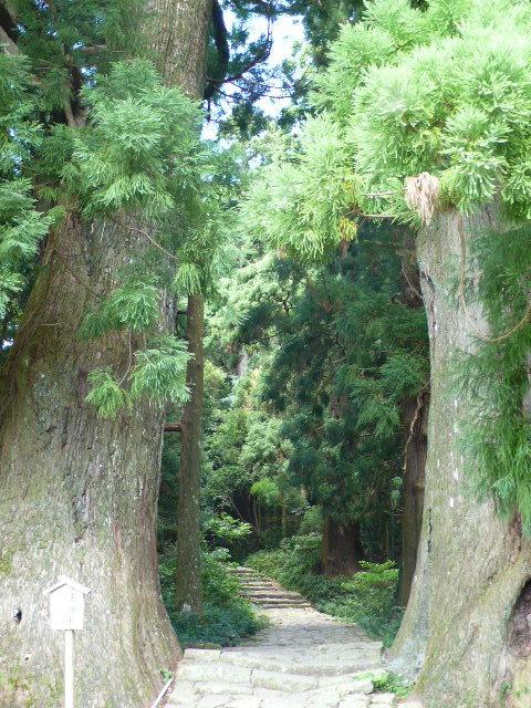 2008,7和歌山の 092.jpg