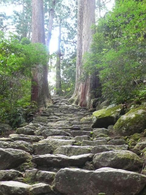 2008,7和歌山の 122.jpg