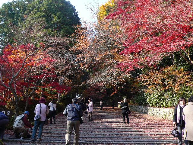 2008年12月京都 027.jpg