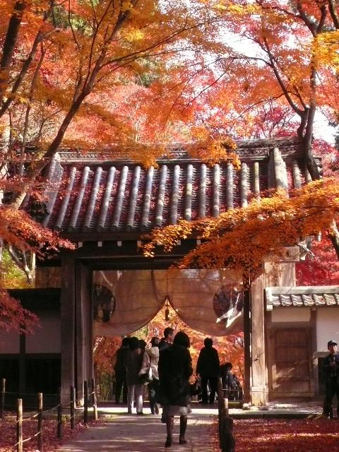 2008年12月京都 066.jpg