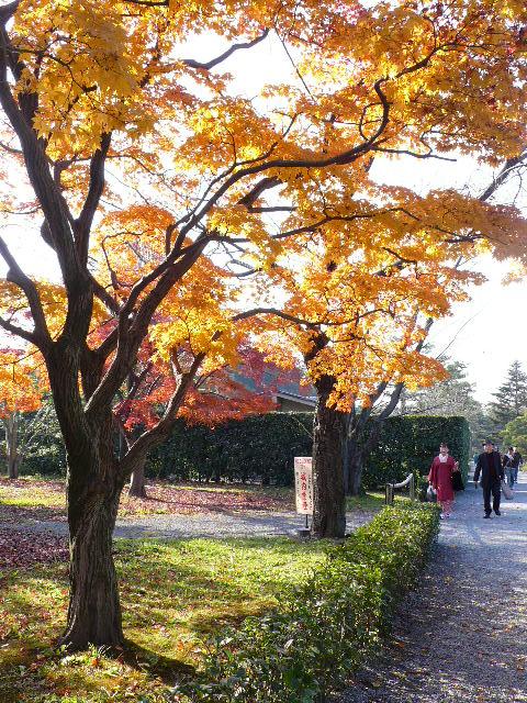 2008年12月京都 088.jpg