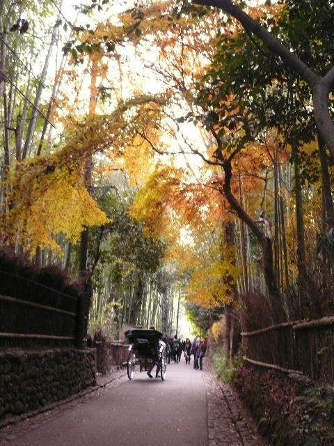 2008年12月京都 117.jpg