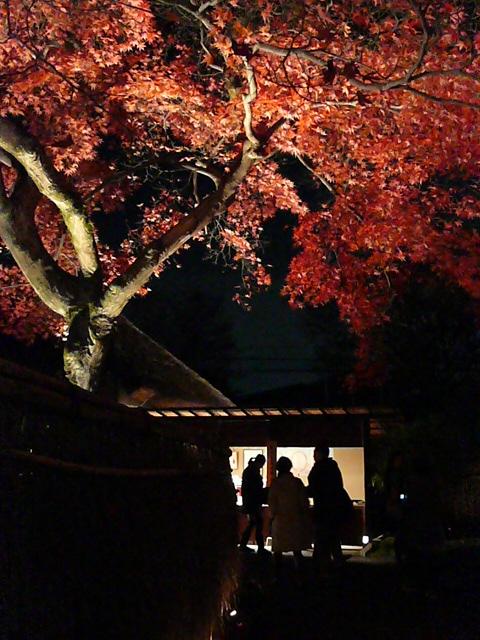 2008年12月京都 139.jpg