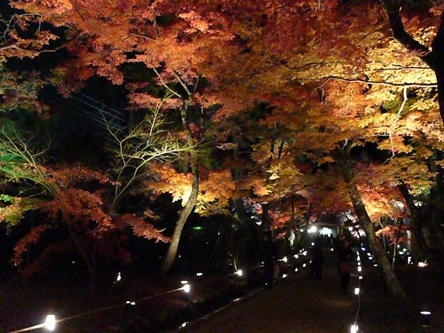 2008年12月京都 140.jpg