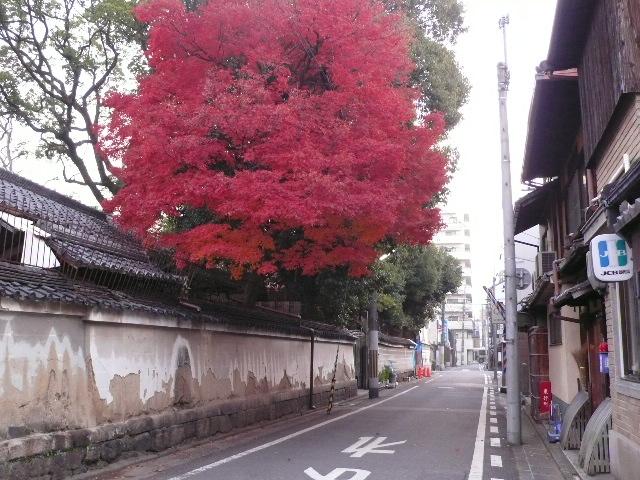 2008年12月京都 143.jpg