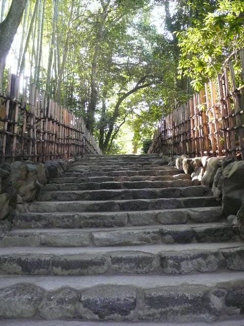 2008年12月京都 160.jpg