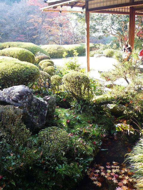 2008年12月京都 168.jpg