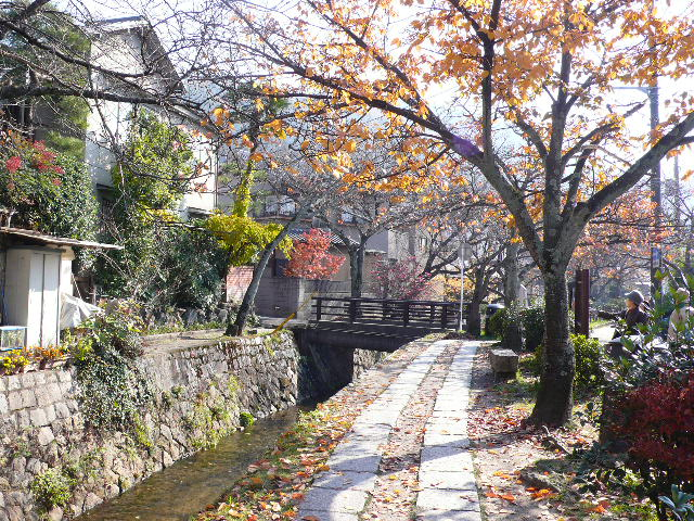2008年12月京都 180.jpg