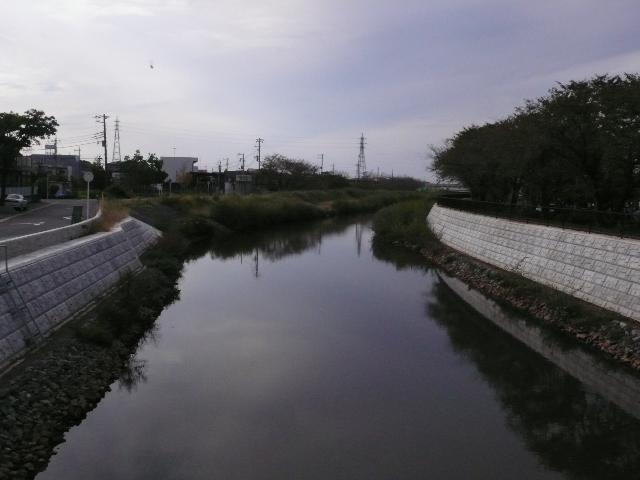 2008年10月佐倉 002.jpg